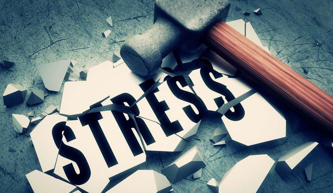 Die vier Ebenen der Stressreaktion – Stress abbauen Teil 3